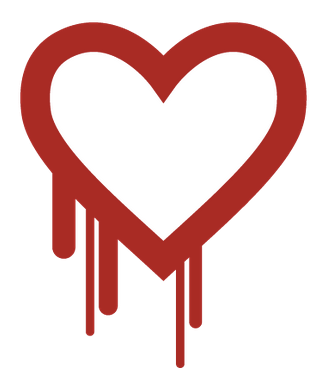 How To Test And Confirm OpenSSL Is Updated For Nginx Ruby On Ubuntu 1204