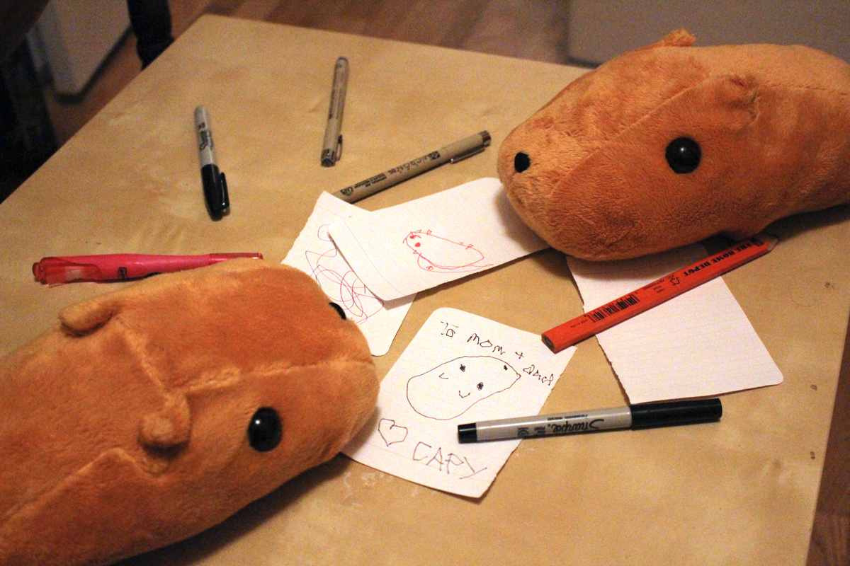 Capybaras making art